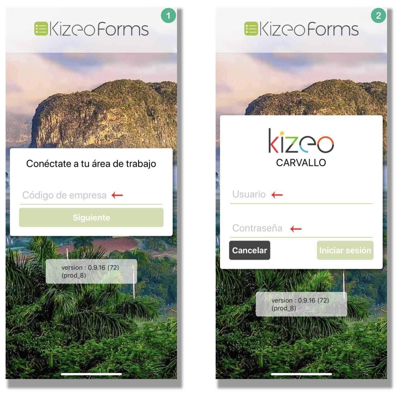 Conectate a tu cuenta Kizeo Forms