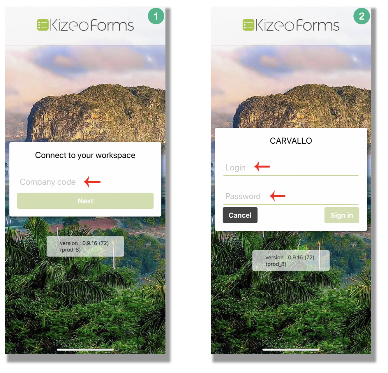 Log in Kizeo Forms.