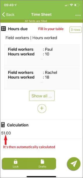example of an employee time sheet on the mobile application