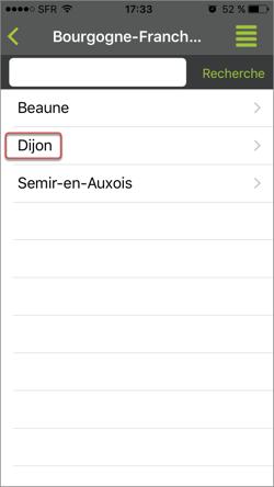Aperçu de votre liste hiérarchique-référentielle sur le mobile ou tablette. Appuyez sur les flèches pour faire défiler les images