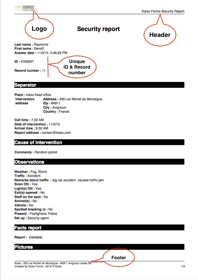 Standard PDF