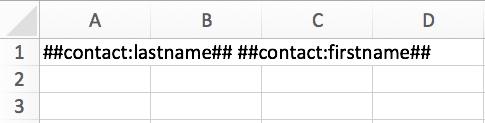 Creer su formulario en Excel utilizando las etiquetas.