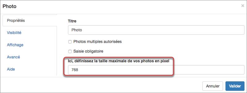 vous pouvez définir la taille maximale de vos photos en pixel depuis les options de votre élément Photo