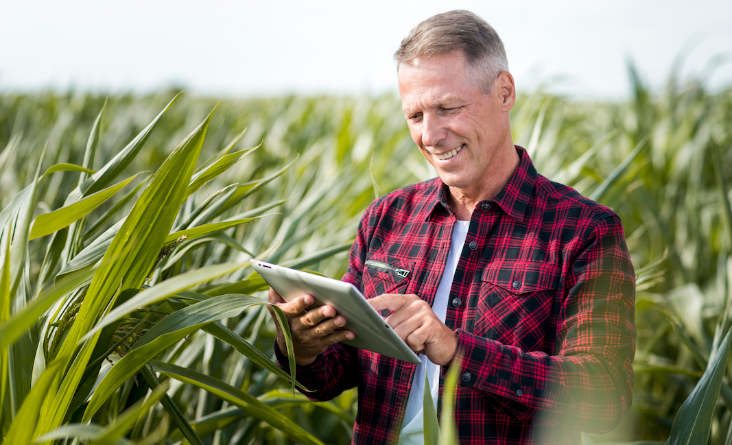 crop monitoring app with kizeo forms