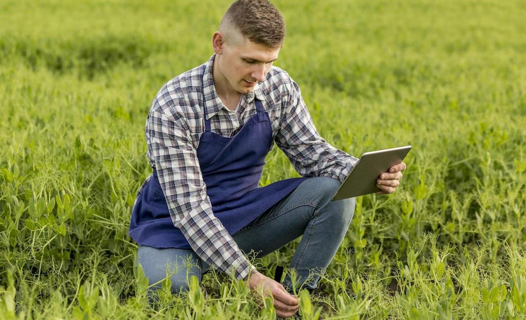 Kizeo Forms app for agriculture