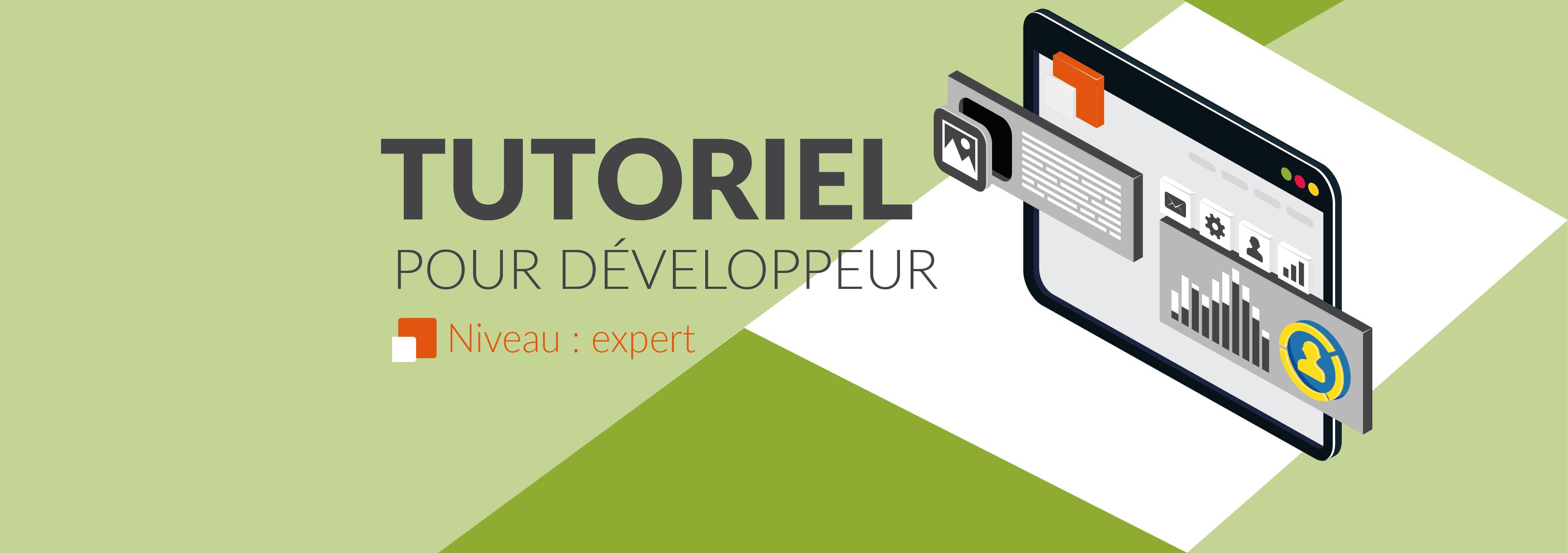 Bannière tutoriel développeur